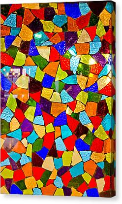 Colorful Visions Canvas Print by Manu Singh