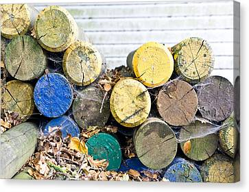 Colorful Wood Logs Canvas Print by Tom Gowanlock