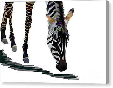 Canvas Print featuring the digital art Colorful Zebra 2 by Teresa Zieba