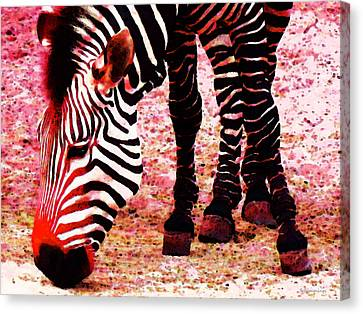 Colorful Zebra - Buy Black And White Stripes Art Canvas Print by Sharon Cummings