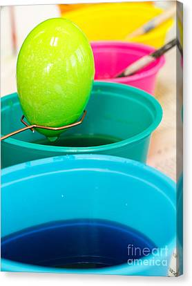Coloring Easter Eggs Canvas Print by Edward Fielding