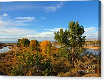 Colors Along The Colorado Canvas Print by Bob Hislop