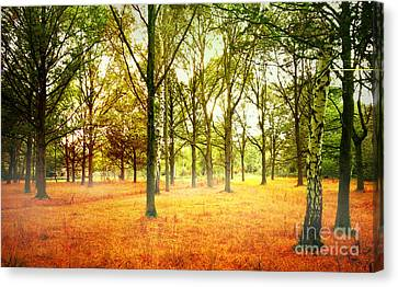 Canvas Print featuring the photograph Colors Cool by Boon Mee