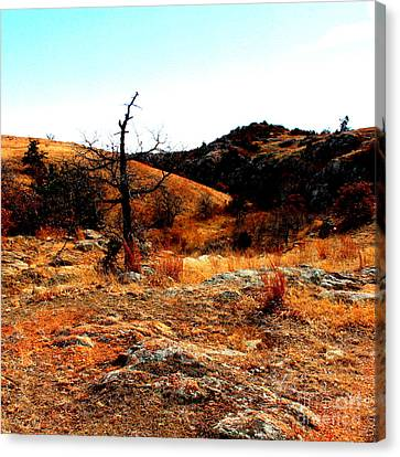 Colors Canvas Print by Mickey Harkins