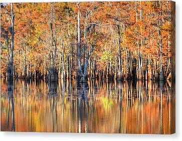 Colors Of Autumn Canvas Print by Ester  Rogers