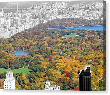 Colors Of Central Park Canvas Print