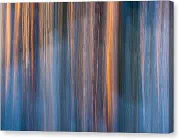 Colors Of Dusk Canvas Print by Davorin Mance