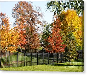 Canvas Print featuring the photograph Colors Of Fall by Judy Palkimas