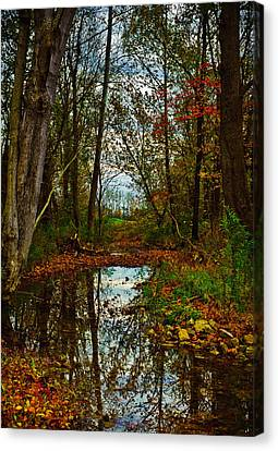 Colors Of Fall Canvas Print by Kristi Swift