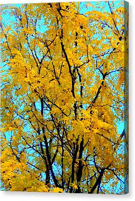 Colors Of Fall - Smatter Canvas Print