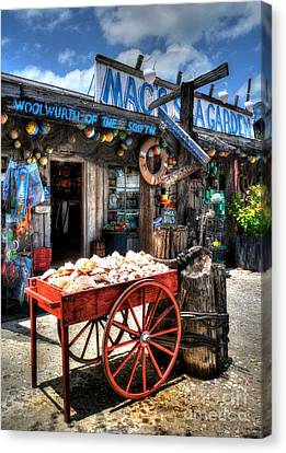 Colors Of Key West 3 Canvas Print by Mel Steinhauer