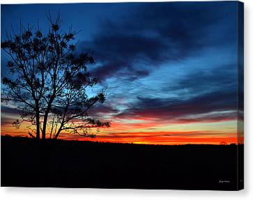 Colors Of Nature - Sunrise 001 Canvas Print by George Bostian