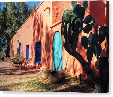 Colors Of The Desert Southwest Canvas Print by Lucinda Walter