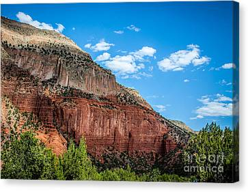 Colors Of The Jemez Canvas Print