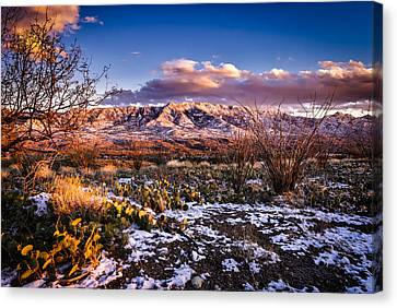 Canvas Print featuring the photograph Colors Of Winter by Mark Myhaver