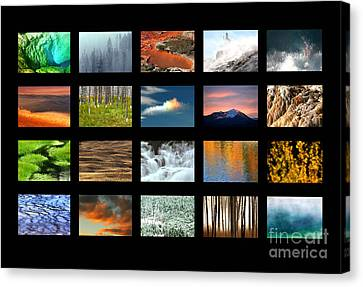Canvas Print featuring the photograph Colors Of Yellowstone by Clare VanderVeen