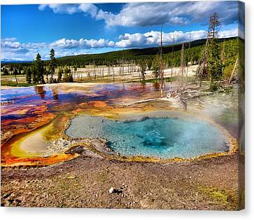Bacteria Canvas Print - Colors Of Yellowstone National Park by Dan Sproul