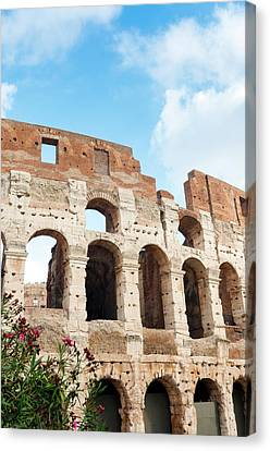 Colosseum Or Flavian Amphitheatre Canvas Print
