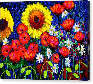 Colour Cluster Canvas Print by John  Nolan