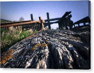 Canvas Print featuring the photograph Colour In Decay  by Stewart Scott