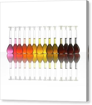 Colour Range Of Universal Indicator Canvas Print by Science Photo Library