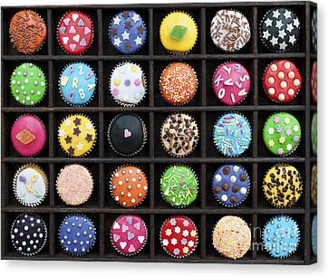 Colourful Cupcakes  Canvas Print by Tim Gainey