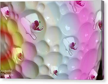 Colourful Orchids Canvas Print