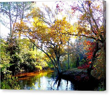 France Canvas Print - Colours Of Autumn by Bishopston Fine Art