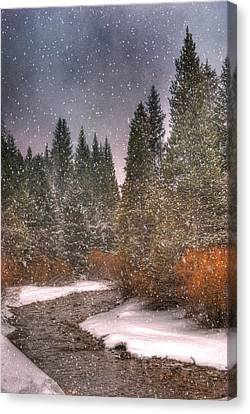 Scenic Drive Canvas Print - Colours Of Winter by Juli Scalzi