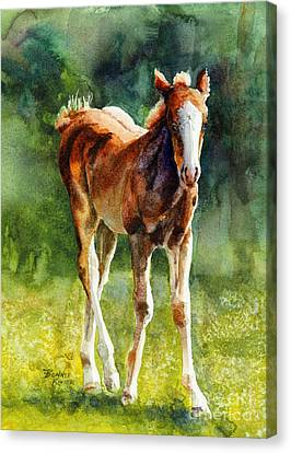 Canvas Print featuring the painting Colt In Green Pastures by Bonnie Rinier