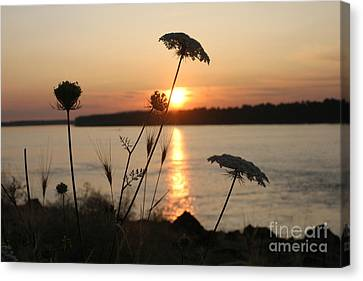 Columbia Gorge Sunset Canvas Print by Cari Gesch