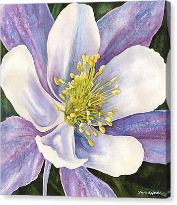 Columbine Closeup Canvas Print by Anne Gifford