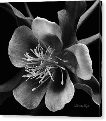 Canvas Print featuring the photograph Columbine In Black And White by Karen Slagle