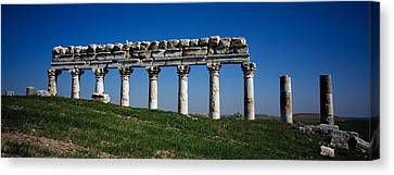 Columns On A Landscape, Apamea, Syria Canvas Print by Panoramic Images