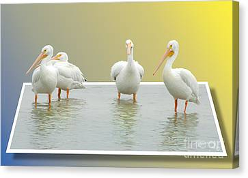 Come On In The Water Is Fine Canvas Print
