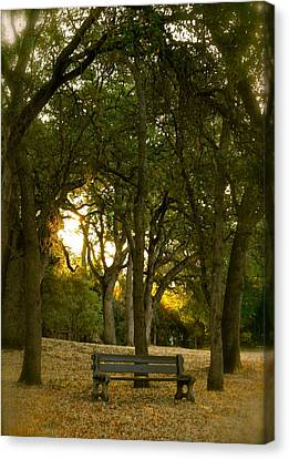 Come Sit Awhile Canvas Print by Michele Myers