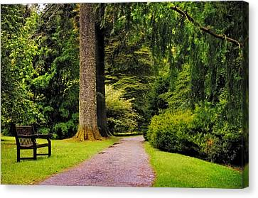 Come Sit With Me. Benmore Botanical Garden. Scotland Canvas Print by Jenny Rainbow
