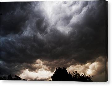 Comes The Storm Canvas Print by Randi Kuhne