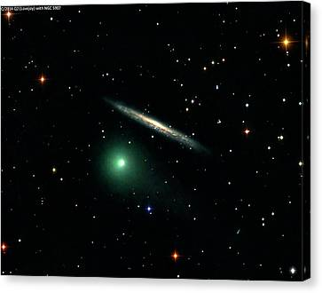Comet C2014 Q2 And Galaxy Ngc 5907 Canvas Print by Damian Peach