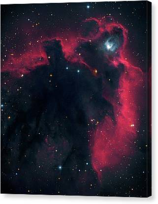 Cometary Globule Ldn 1622 In Orion Canvas Print by Robert Gendler