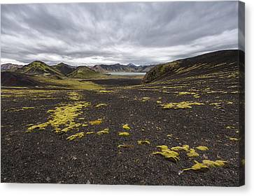 Coming And Going Canvas Print by Jon Glaser