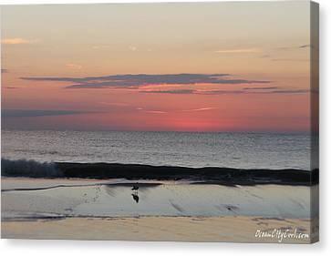 Coming Dawn Canvas Print by Robert Banach