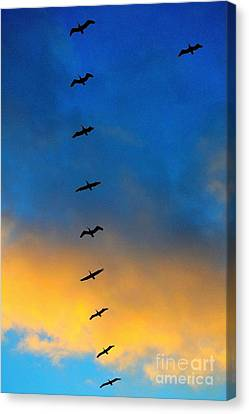 Canvas Print featuring the photograph Coming Home 2 by Theresa Ramos-DuVon