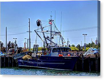 Commercial Fishing - Sea Pearl Canvas Print by Heidi Smith