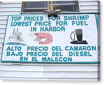 Commercial Shrimp Business In Ft Myers Florida Posted Sign Canvas Print by Robert Birkenes