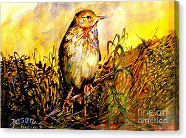 Canvas Print featuring the painting Common Pipit by Jason Sentuf