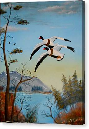 Canvas Print featuring the painting Common Shelducks by Al  Johannessen