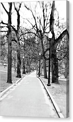 Commons Park Pathway Canvas Print