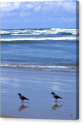 Companion Crows Canvas Print