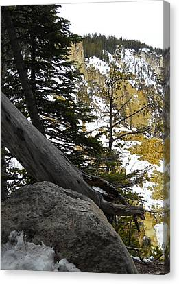 Canvas Print featuring the photograph Composition At Lower Falls by Michele Myers